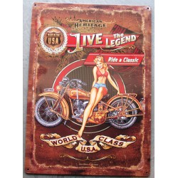 plaque moto et pin up live...