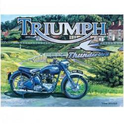 plaque moto triumph...
