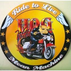 plaque hog moto americaine...
