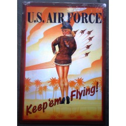 plaque pin up US air force...