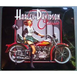 plaque Harley Davidson pin...