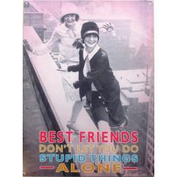 plaque best friends humour...
