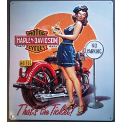 plaque Harley Davidson pin up pilicire qui verbalise no parking  usa