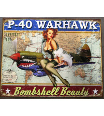 plaque pin up avion p-40...