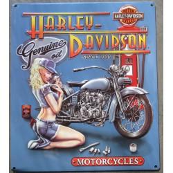 plaque Harley Davidson pinup mecano bleu pompe essence